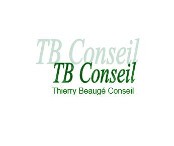 Thierry Beaugé Conseil